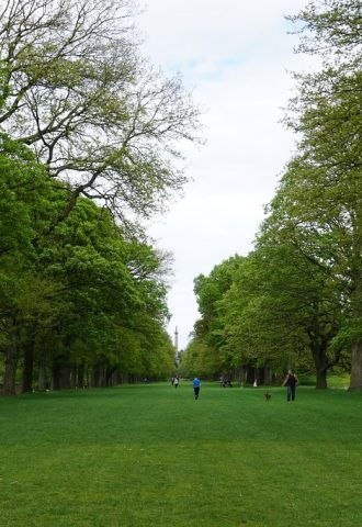 Newcastle Upon Tyne park